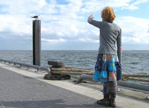 Möwe an der Nordsee