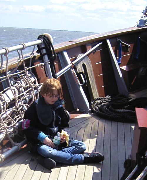 Schweinswale beobachten, Nordsee, Segelschiff, Wilhelmshaven, Jade